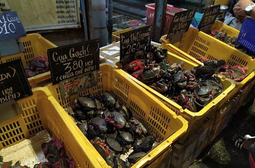 Top 10 địa chỉ bán hải sản tươi sống ngon & rẻ nhất ở TPHCM