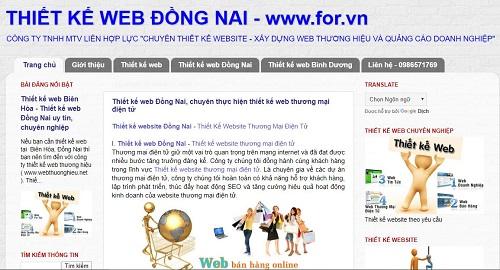 top-5-cong-ty-thiet-ke-web-uy-tin-tai-dong-nai-5