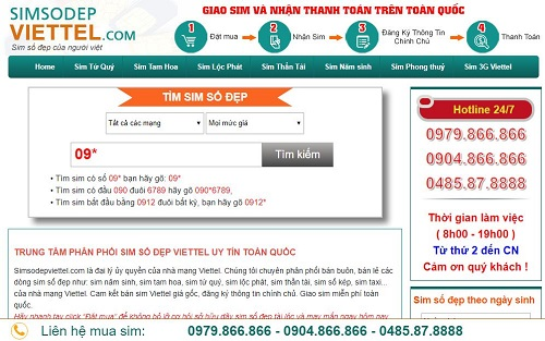 top-10-website-ban-sim-so-dep-gia-re-tphcm-9