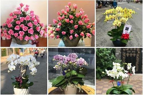 Top 5 shop hoa tươi đẹp giá rẻ nhất tại quận 1, Tp. Hồ Chí Minh