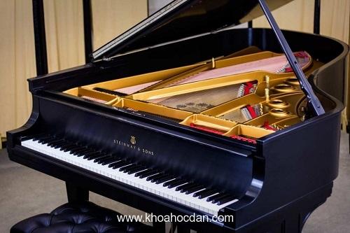 top-8-trung-tam-day-dan-piano-tot-nhat-tai-tphcm-7