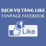 top-10-dich-vu-tang-sub-tang-like-facebook-gia-re-uy-tin-2