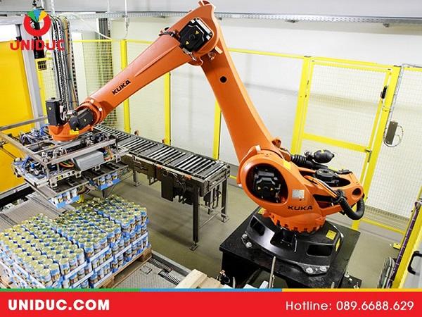 Hệ thống dây chuyền bốc xếp bao, Robot bốc xếp bao hàng