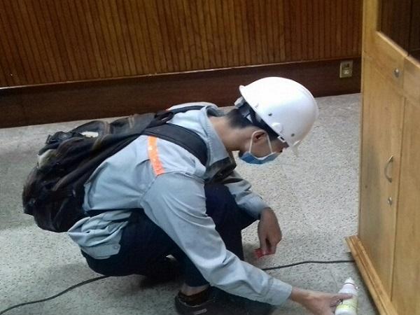 Top 5 dịch vụ diệt mối tận gốc tốt, uy tín nhất ở quận Tân Phú